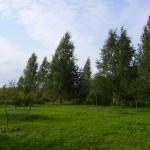 Садовые участки бесплатно